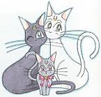 mooncats.jpg